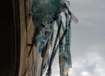 Calamaronna, 2020